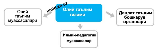 Ўзбекистонда таълим тизими